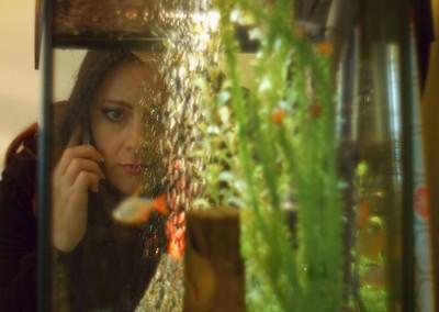 Rebecca Fish Tank